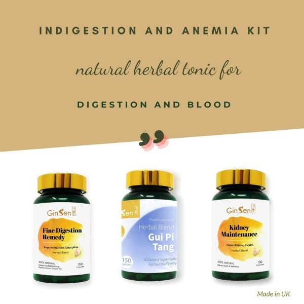 Indigestion and Anemia Kit