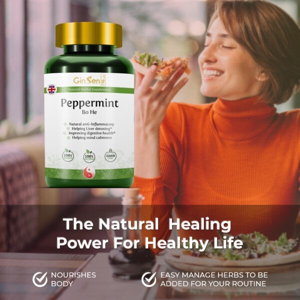 Peppermint Tablets Bo He by GinSen