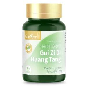 Gui Zi Di Huang Tang by GinSen