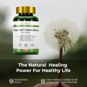 Natural Dandelion