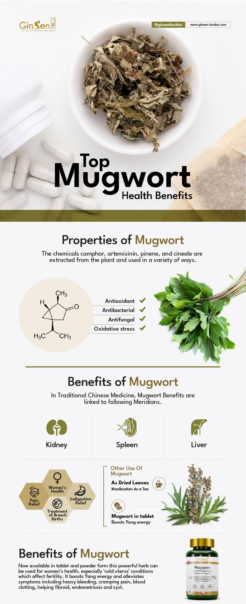 mugwort benefits