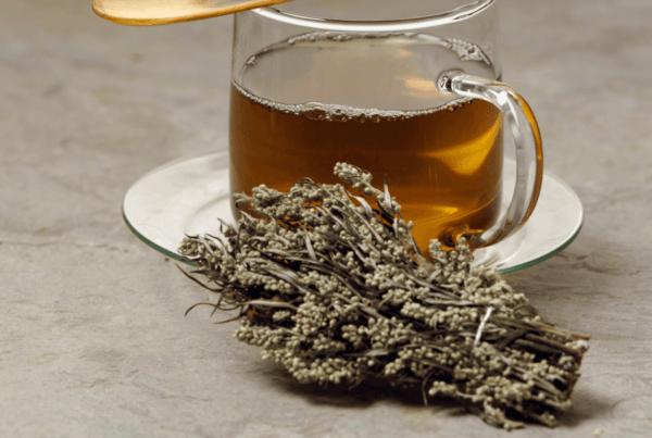 mugwort benefits chinese medicine