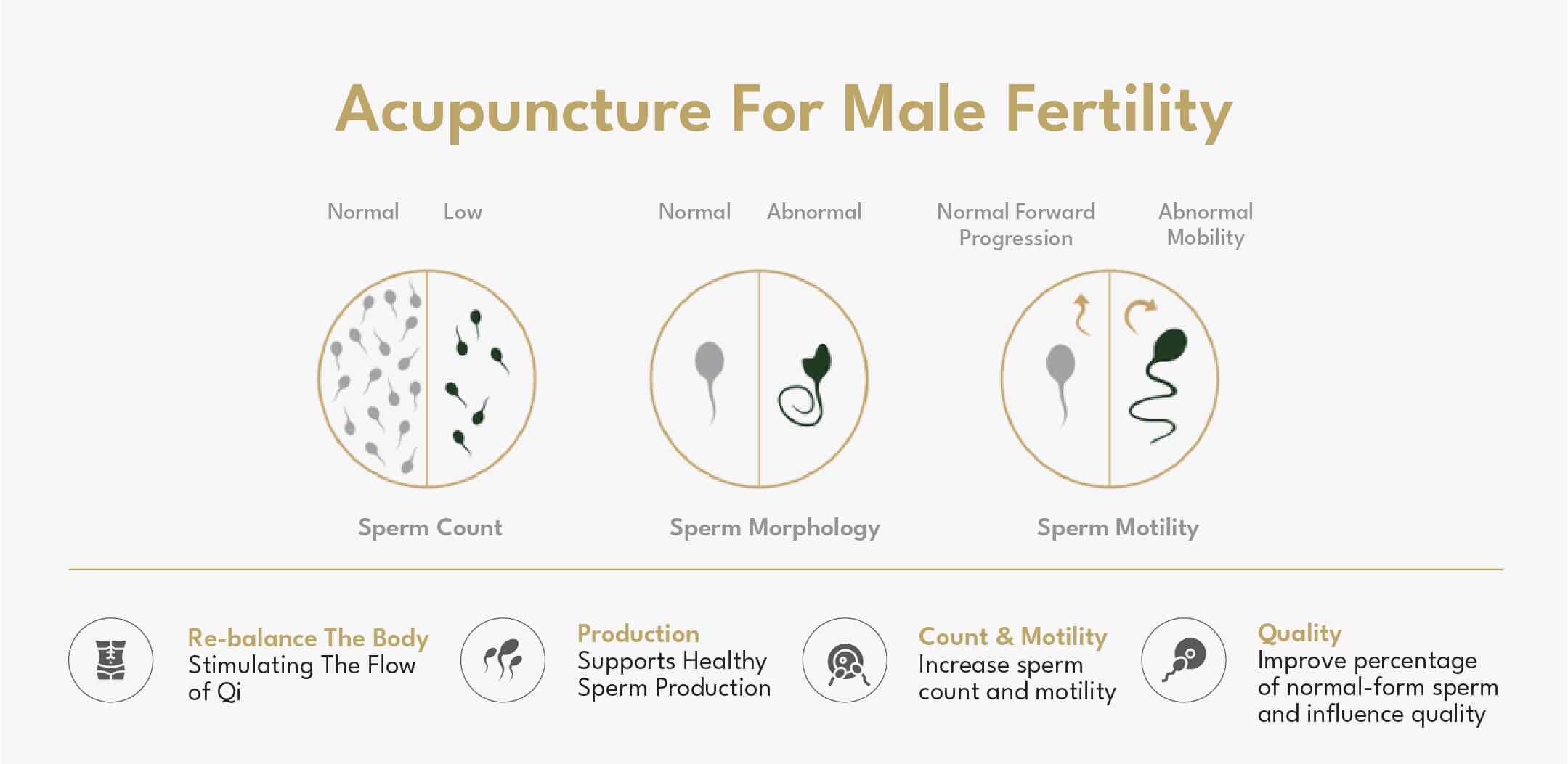 Acupuncture For Male Fertility GinSen