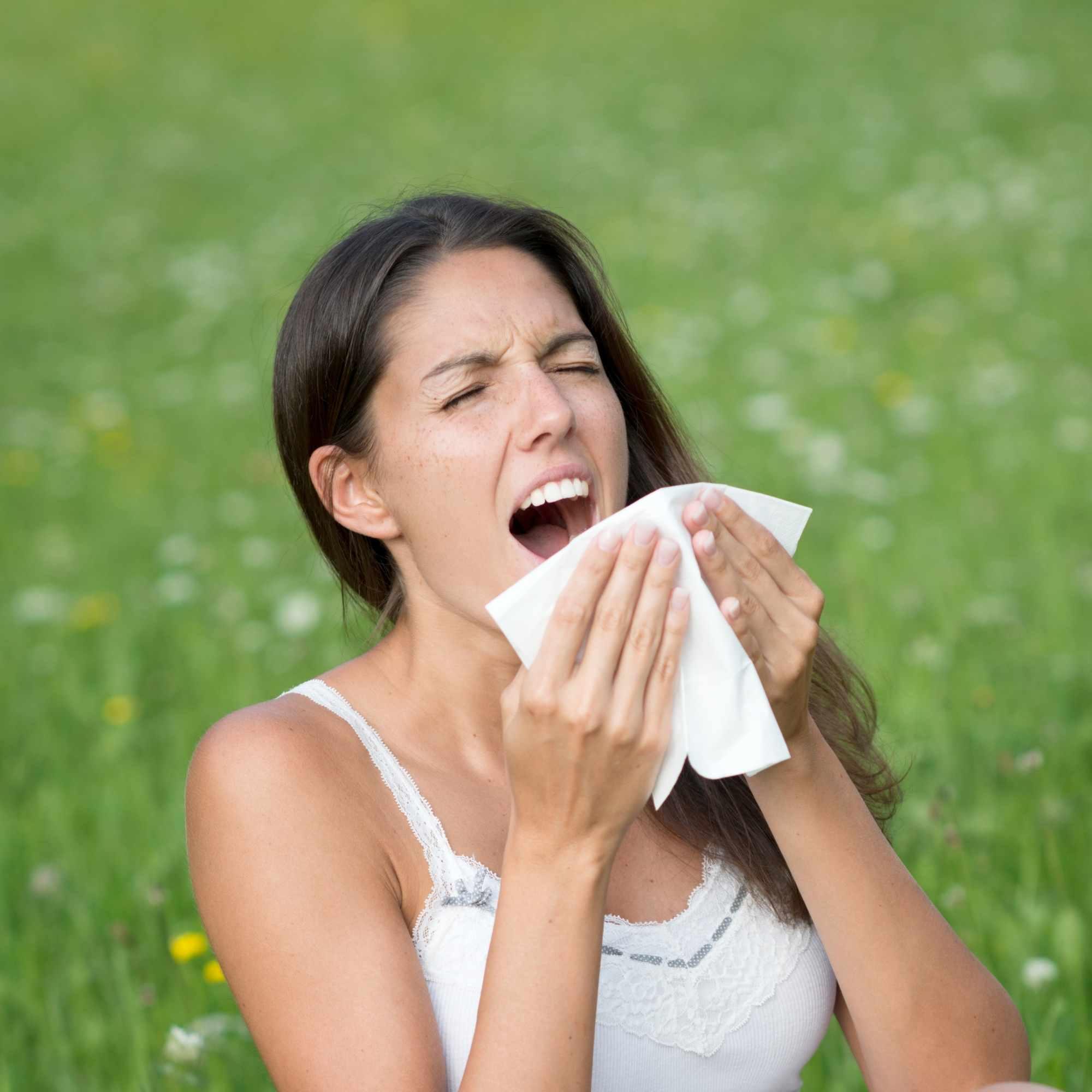 Natural treatment for Allergic Rhinitis