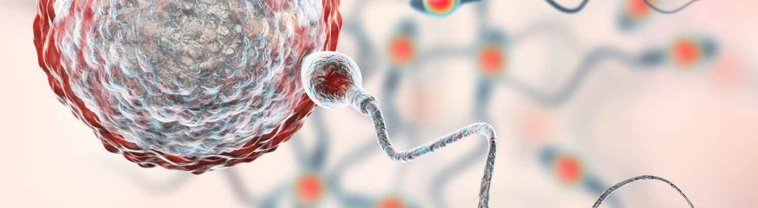 No sperm count? Traditional Chinese Medical Azoospermia Treatment Can Help
