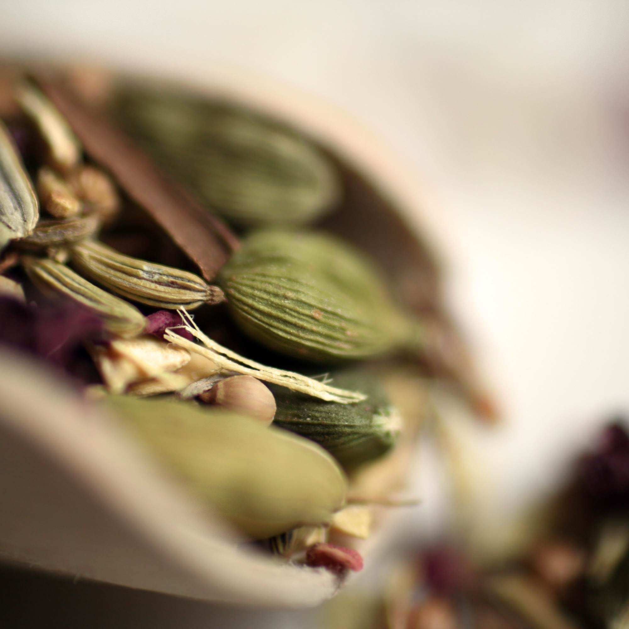 chinese herbs for kidney health
