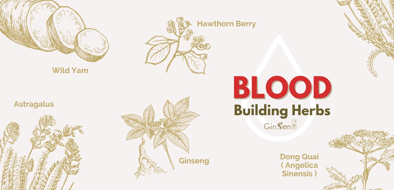 blood building herbs