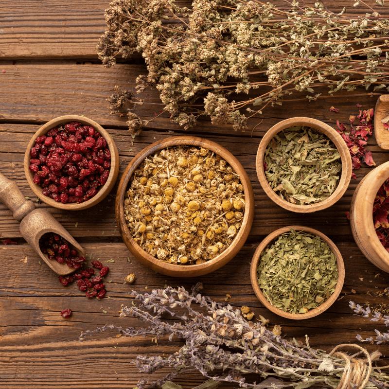 Top 6 Herbs For Fertility