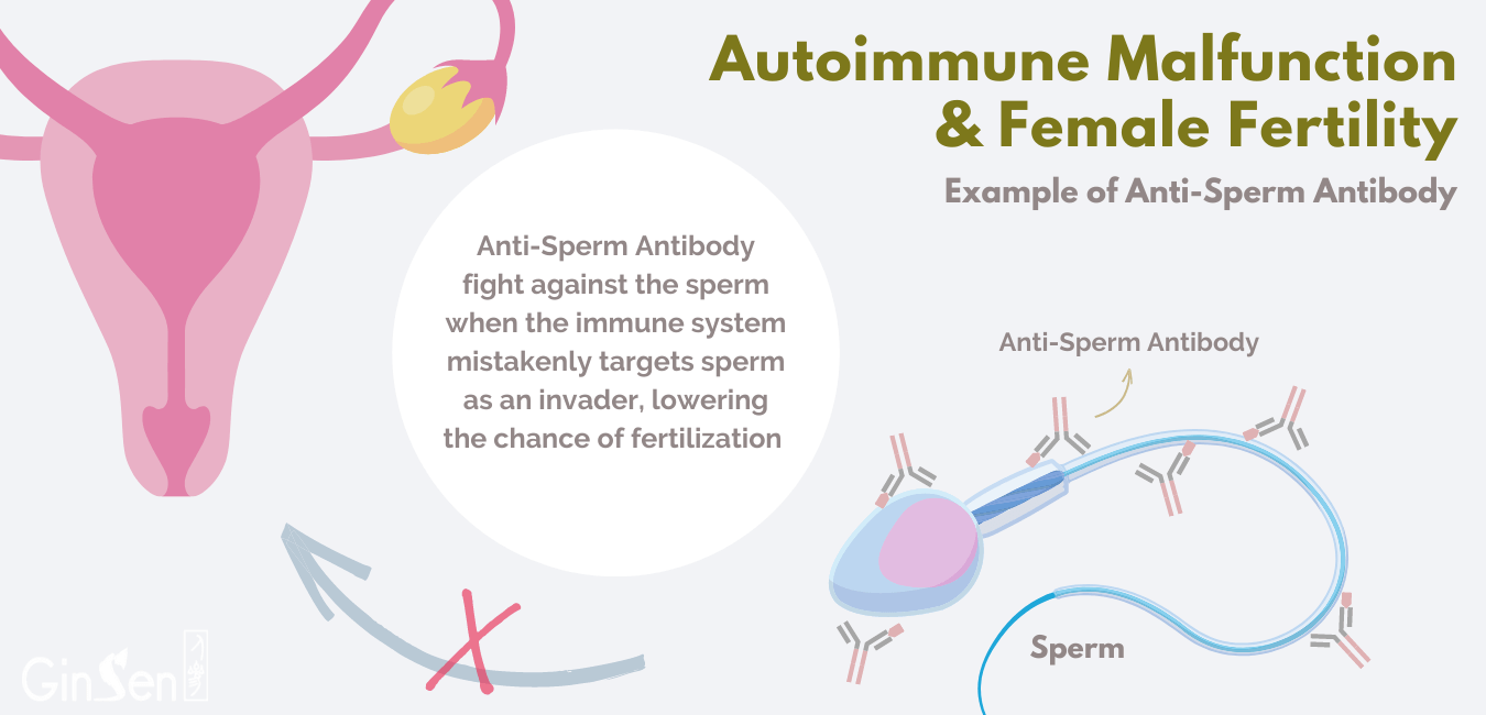 immune system and fertility